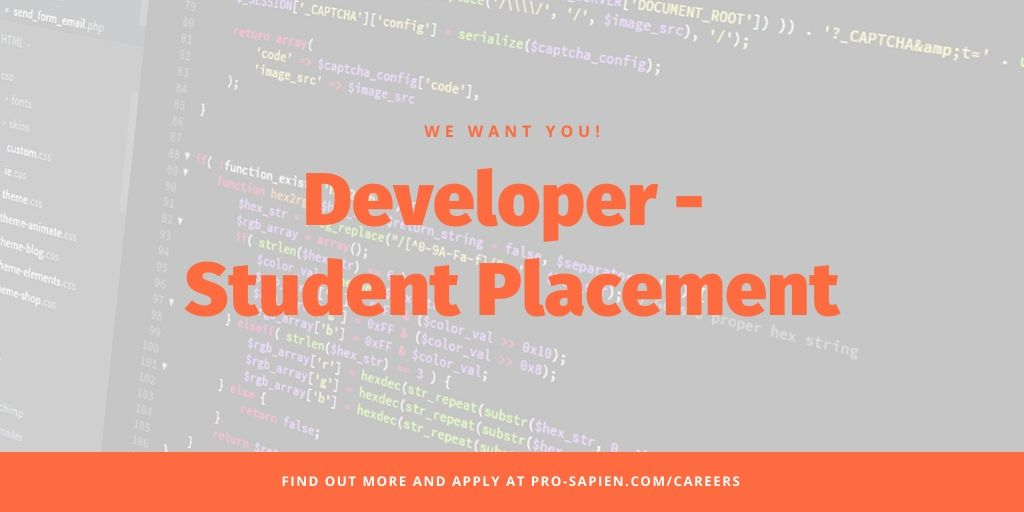 Student Developer Placement